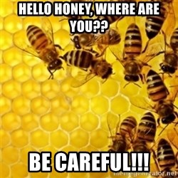 Honeybees - hello honey, where are you?? be careful!!!