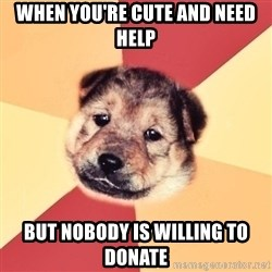 Typical Puppy - when you're cute and need help but nobody is willing to donate