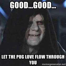 Sith Lord - Good...Good... Let the pug love flow through you