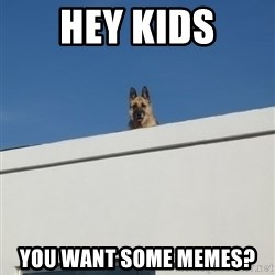 Roof Dog - HEY KIDS You want some memes?