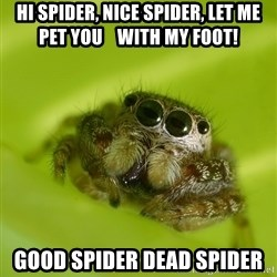 The Spider Bro - HI spider, nice spider, let me pet you    With My foot! Good spider dead spider