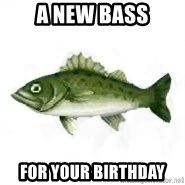 invadent sea bass - a new bass for your birthday