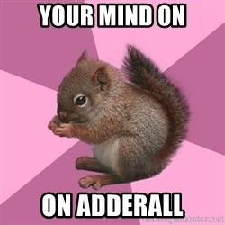 Shipper Squirrel - Your Mind on on Adderall