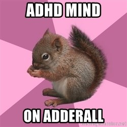 Shipper Squirrel - ADHD Mind on Adderall