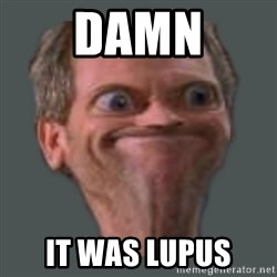 Housella ei suju - Damn It was Lupus