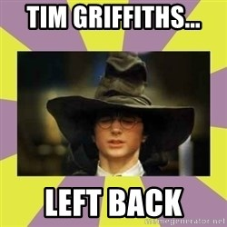 Harry Potter Sorting Hat - Tim Griffiths...  Left back