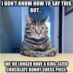 Chris Hansen Cat - I don't know how to say this but.... We no longer have a King-sized chocolate bunny chess piece.