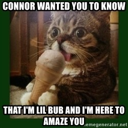 lil bub - Connor wanted you to know that i'm lil bub and i'm here to amaze you