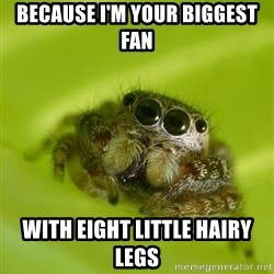 The Spider Bro - Because i'm your biggest fan With eight little hairy legs