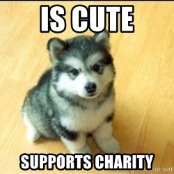 Baby Courage Wolf - is cute supports charity