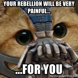 bane cat - Your rebellion will be very painful... ...For You