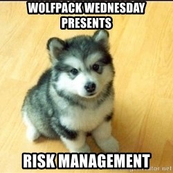 Baby Courage Wolf - Wolfpack Wednesday Presents Risk Management
