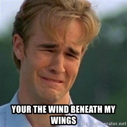 Crying Dawson -  your the wind beneath my wings
