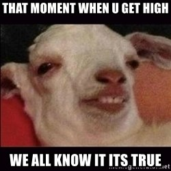 10 goat - that moment when u get high we all know it its true