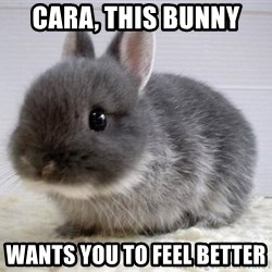 ADHD Bunny - Cara, This Bunny Wants you to feel better