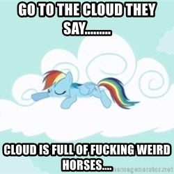 Rainbow Dash Cloud - Go to the cloud they say......... Cloud is full of fucking weird horses....