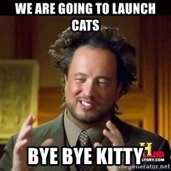 History guy - We are going to launch cats Bye Bye Kitty