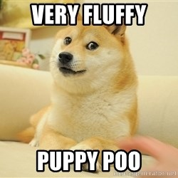 so doge - Very fluffy PUPPY POO