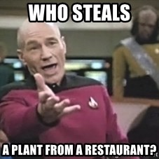 Captain Picard - Who steals  a plant from a restaurant?