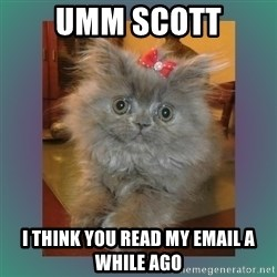 cute cat - Umm Scott I think you read my email a while ago