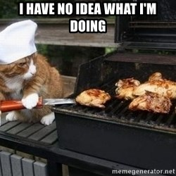 BBQ CAT - I have no idea what I'm doing