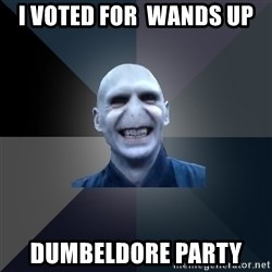 crazy villain - I VOTED FOR  WANDS UP  DUMBELDORE PARTY