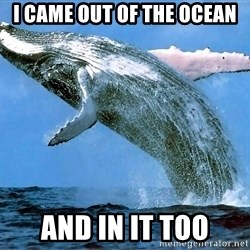 whaleeee - I came out of the ocean and in it too