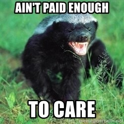 Honey Badger Actual - ain't paid enough to care