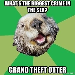Ocd Otter - what's the biggest crime in the sea? Grand theft otter