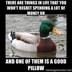 advice mallard - there are things in life that you won't regret spending a lot of money on and one of them is a good pillow