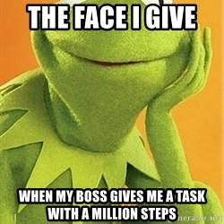 Kermit the frog - The Face I Give  When my boss gives me a task with a million steps