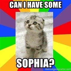 Cute Kitten - Can I have some sophia?