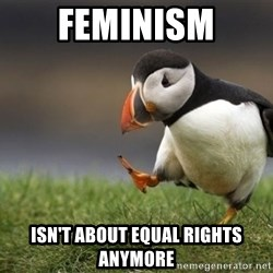 Unpopular Opinion Puffin - Feminism Isn't about equal rights anymore