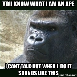 Rustled Jimmies - you know what i am an ape i cant talk but when i  do it sounds like this