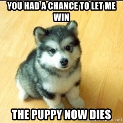 Baby Courage Wolf - You had a Chance to Let me Win The Puppy Now Dies