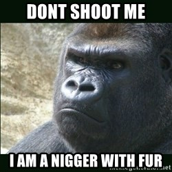 Rustled Jimmies - dont shoot me i am a nigger with fur