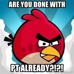 Angry Bird - ARE YOU DONE WITH PT ALREADY?!?!