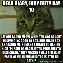 "Depressed cat 2 - dear diary, jury duty day 10 let out a loud meow when tail got caught in swinging door to box. humans in box shooshed me. humans beneath human-on-high ""pursue damages if tail permanently disfigured."" they flicked small pieces of paper at me. humiliated today. still no catnip."