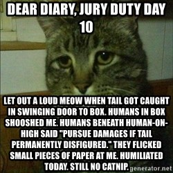 "Depressed cat 2 - dear diary, jury duty day 10 let out a loud meow when tail got caught in swinging door to box. humans in box shooshed me. humans beneath human-on-high said ""pursue damages if tail permanently disfigured."" they flicked small pieces of paper at me. humiliated today. still no catnip."