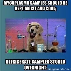 Chemistry Dog - Mycoplasma samples should be kept moist and cool; Refrigerate samples stored overnight.