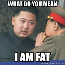 What Do You Mean....Kim Jong Un - what do you mean i am fat