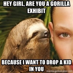 Whisper Sloth - hey girl, are you a gorilla exhibit because i want to drop a kid in you