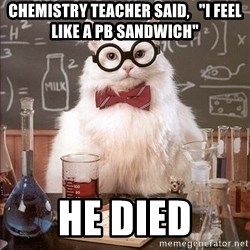 "Chemistry Cat - Chemistry teacher said,   ""I feel like a Pb sandwich"" He died"