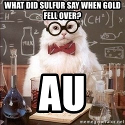 Chemistry Cat - What did Sulfur say when Gold fell over? Au