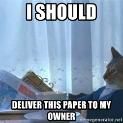 newspaper cat realization - I SHOULD DELIVER THIS PAPER TO MY OWNER