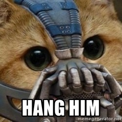 bane cat -  hang him