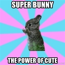 yAy FoR LifE BunNy - super bunny the power of cute
