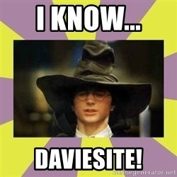 Harry Potter Sorting Hat - I know...  Daviesite!