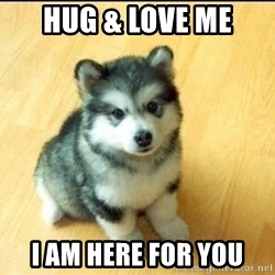 Baby Courage Wolf - Hug & Love Me I am here for You