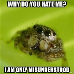 The Spider Bro - Why do you hate me? I am only misunderstood